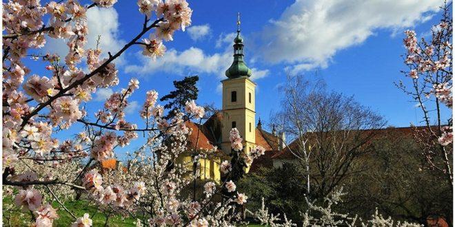 Погода в Праге в мае