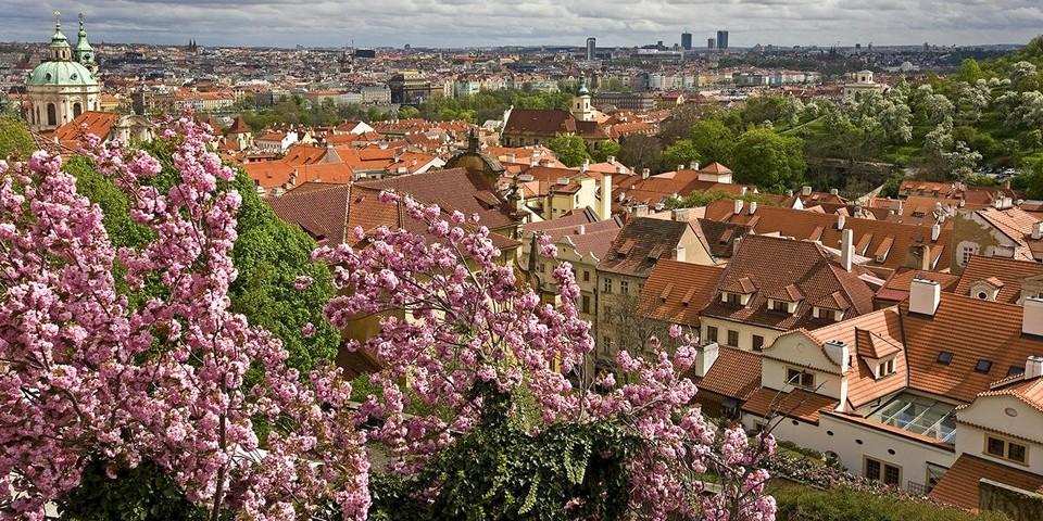 Как и в течение всего года, воздух отличается повышенной влажностью, однако ветреных дней немного.Погода в Праге весной